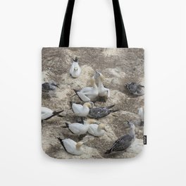 Gannets in a row Tote Bag
