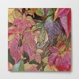 Glossy autumn leaves Metal Print