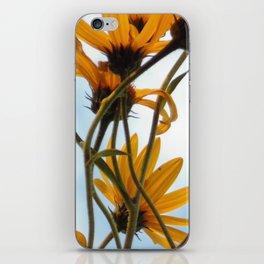 Yellow Daisies iPhone Skin