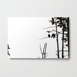 Three Crows High Contrast Metal Print
