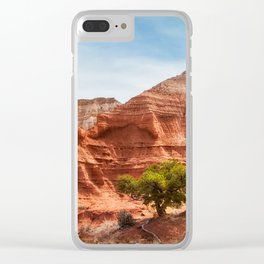 Kodachrome Park colorful desert beauty in spring. Clear iPhone Case