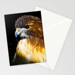 # 155 Stationery Cards