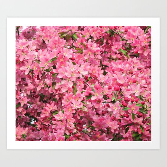 Crab Apple - Pommetier Art Print