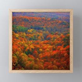 Amicalola Autumn in the Blue Ridge Mountains Framed Mini Art Print