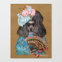 Poodle. Lady from Spain Canvas Print