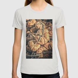 Autumn Grunge T-shirt