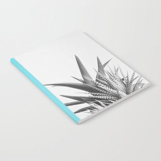 Overlap II Notebook