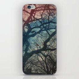 New York Tree iPhone Skin