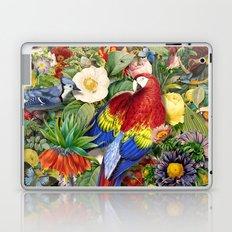 Red Parrot Laptop & iPad Skin