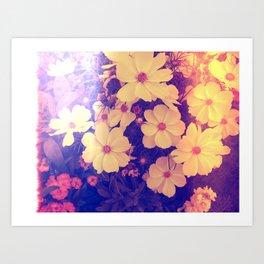 Mellow Yellow Art Print