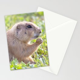 Watercolor Prarie Dog 02, Boulder County, Colorado, Rosy the Nibbler Stationery Cards