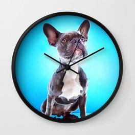 Super Pets Series 1 - Super Bailey Wall Clock