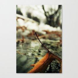 Frail Little Loner Canvas Print