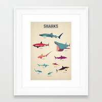 sharks Framed Art Prints featuring Sharks by Simon Alenius