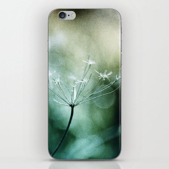 In Quest Of iPhone & iPod Skin