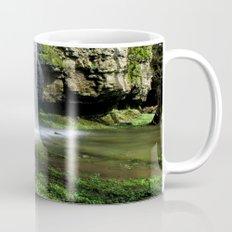 Waterfall at Swallet Falls Mug