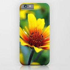 Prairie Flower Slim Case iPhone 6s