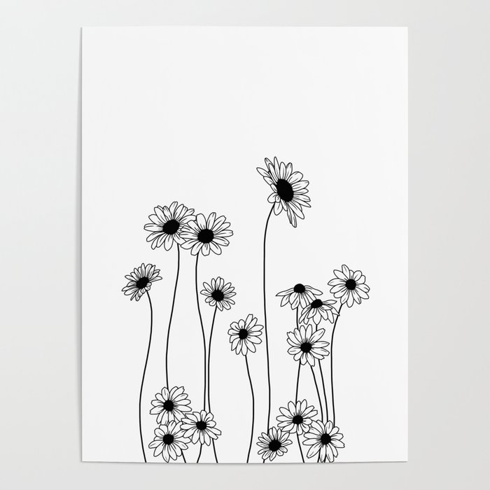 Minimal Line Drawing Of Daisy Flowers Poster By
