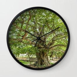 """The """"Magic Tree"""", Killing Fields, Cambodia Wall Clock"""