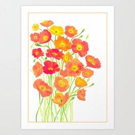 Icelandic Poppies Art Print