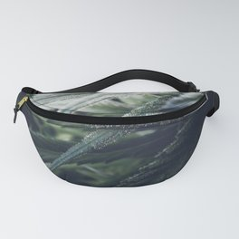 Cannabis Fanny Pack