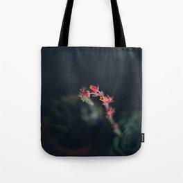 Succulent (3) Tote Bag