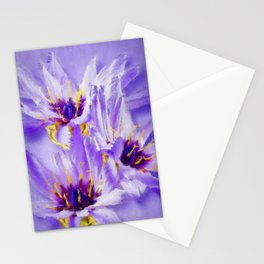 Catananche flowers Stationery Cards