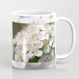Aronia Blossoms Coffee Mug