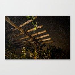 The Night Sky in Costa Rica Canvas Print