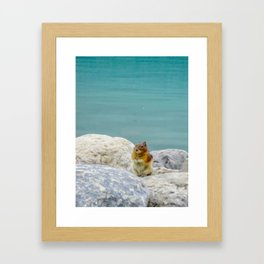 Digital Painting of a Cute Chipmunk sitting on a Rock in front of Lake Louise, Alberta Framed Art Print