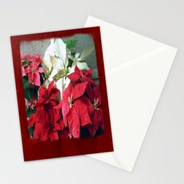 Mixed color Poinsettias 3 Blank P5F0 Stationery Cards