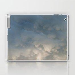 Mammatus Rainbow Laptop & iPad Skin