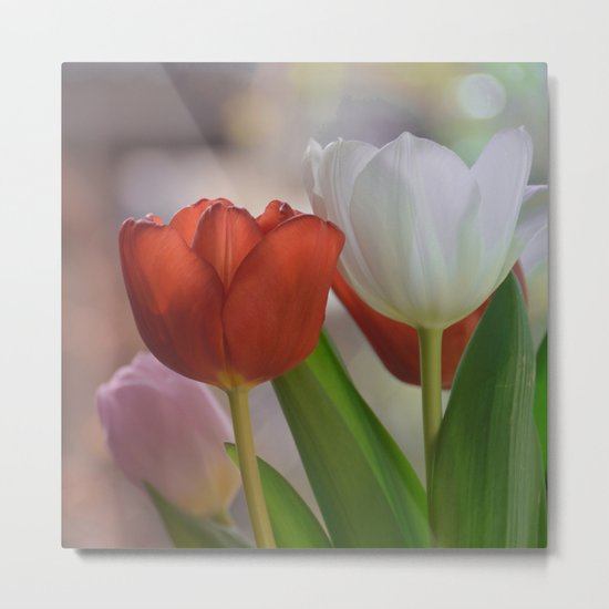 Two Tulips on a pastel background Metal Print