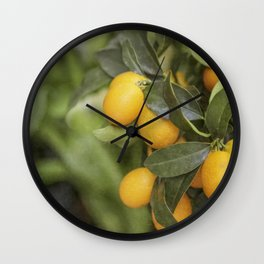 Orange and Green Citrus Wall Clock