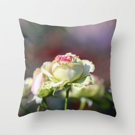 Yellow Roses in the Sunlight Throw Pillow