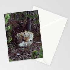 Sleeping Fox Stationery Cards