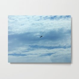 Flying through the Clouds Metal Print