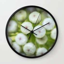 Wht-flowered Milkweed Wall Clock