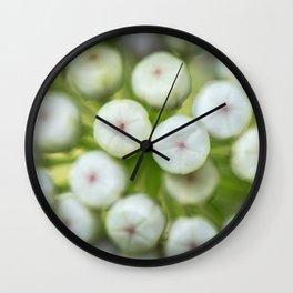 Wht-flowered Milkweed Wall Clock