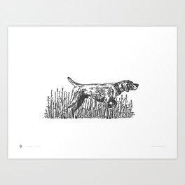 Pointer Art Print