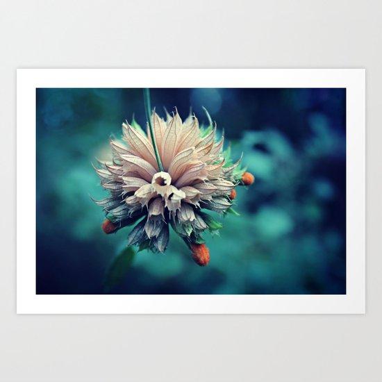 Spring Flower 10 Art Print