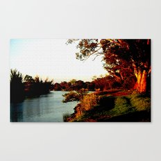 Sunsets on the river bank gum Trees Canvas Print