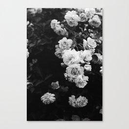 Tumbling Roses Canvas Print