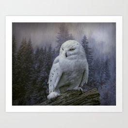 Snowy Owl looking for prey Art Print