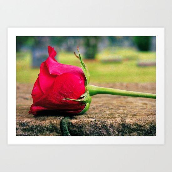 Rose aesthetics Art Print