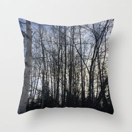 Birch Shadow Throw Pillow