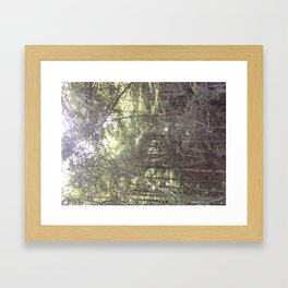 Santa Cruz woods Original Picture  Framed Art Print