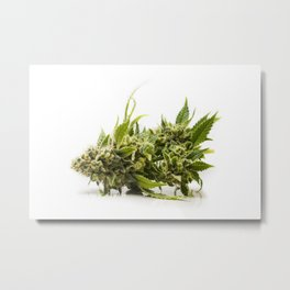 Purple Kush Top Metal Print