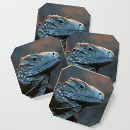 Blue Iguana Coaster