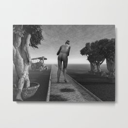 Path In Life Metal Print